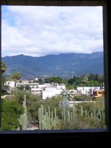 Oaxaca Botanical Garden