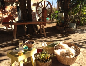 Spinning and plant dyeing demonstration at Angela's