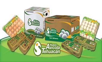 familia-avicola-tehuacan