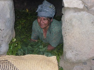 Gloria preparing our temazcal with leaves